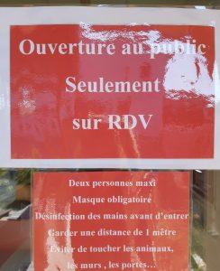 VISITE ADOPTION sur RDV